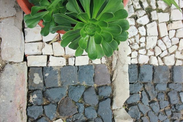 Mosaik frostbeständig